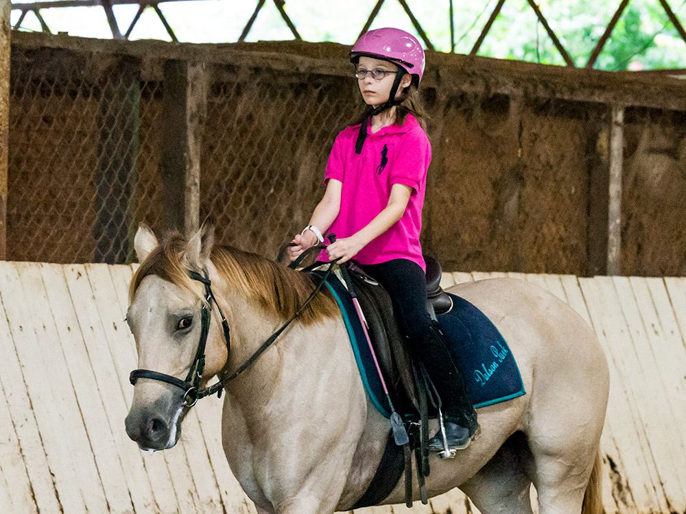 semi private horse riding lessons