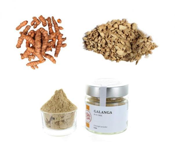 Galanga en sus diferentes formatos de comercialización: galanga fresca, galanga seca y galanga en polvo