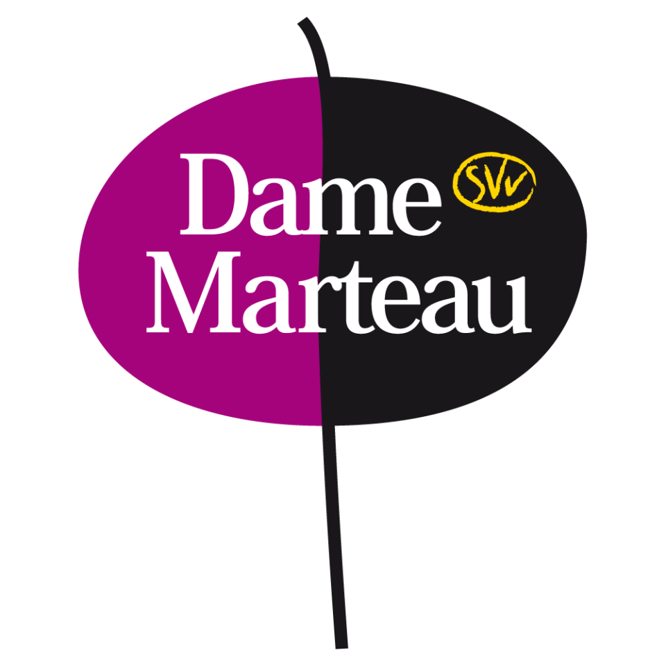Accédez au site de damemarteau.fr