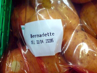 Kartoffel Bernadette