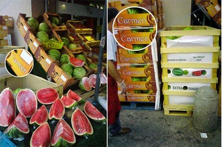 Melone Carmen
