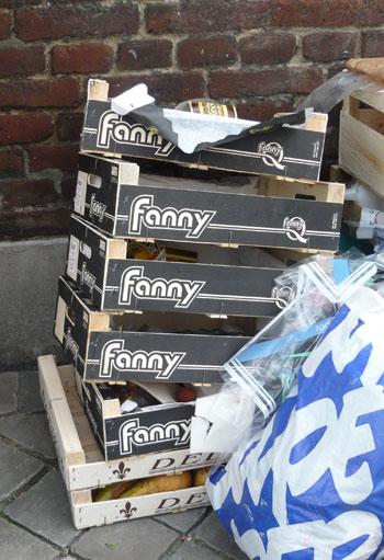 Obst Fanny