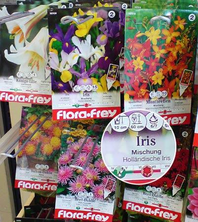 Blumensaat Iris
