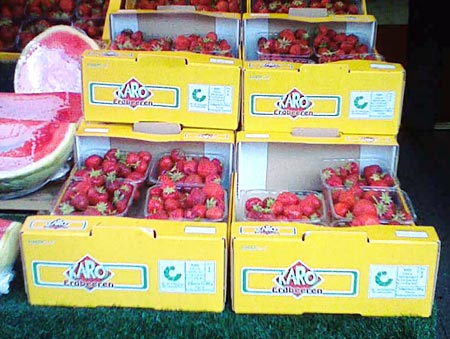 Erdbeeren Karo