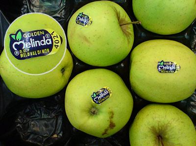 Apfel Melinda