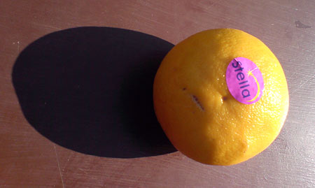 Orange Stella
