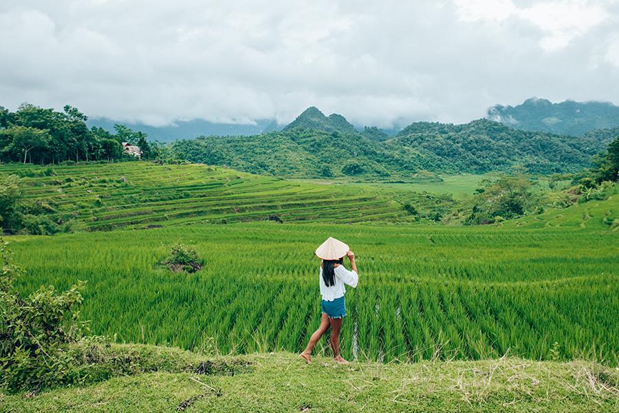 The Best of Vietnam Insider Guide