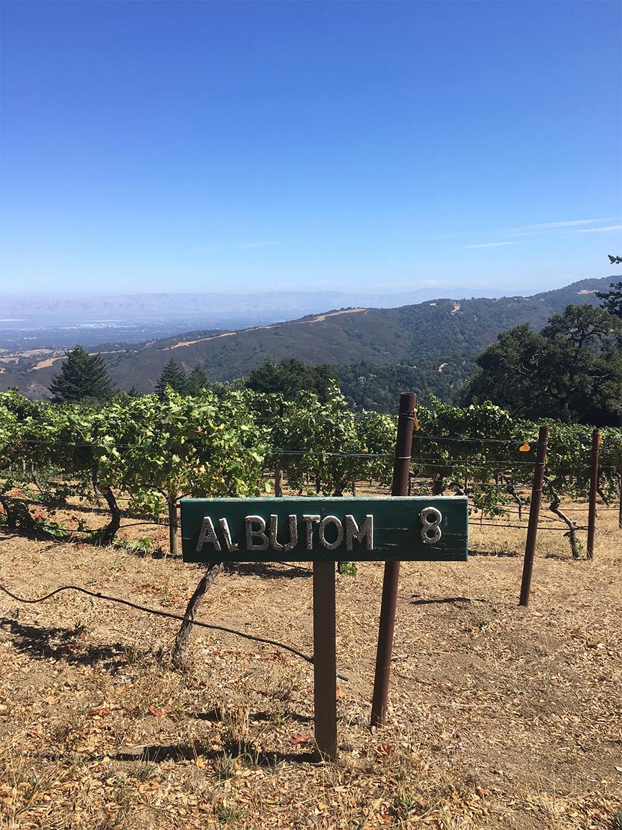 5 Reasons San Mateo County Makes The Perfect Girls Getaway