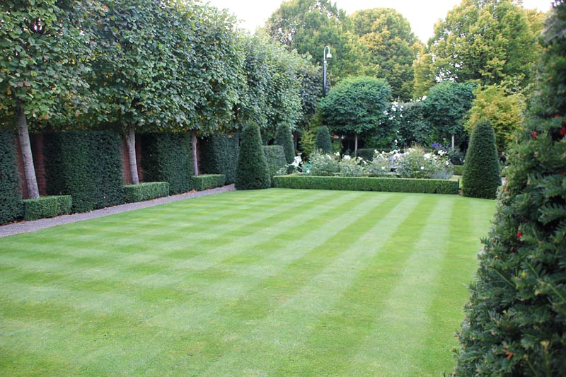 Front Lawn Designs