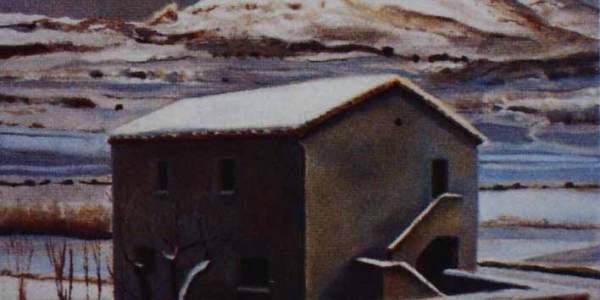 Casa tartarugha (30 x 40 cms)