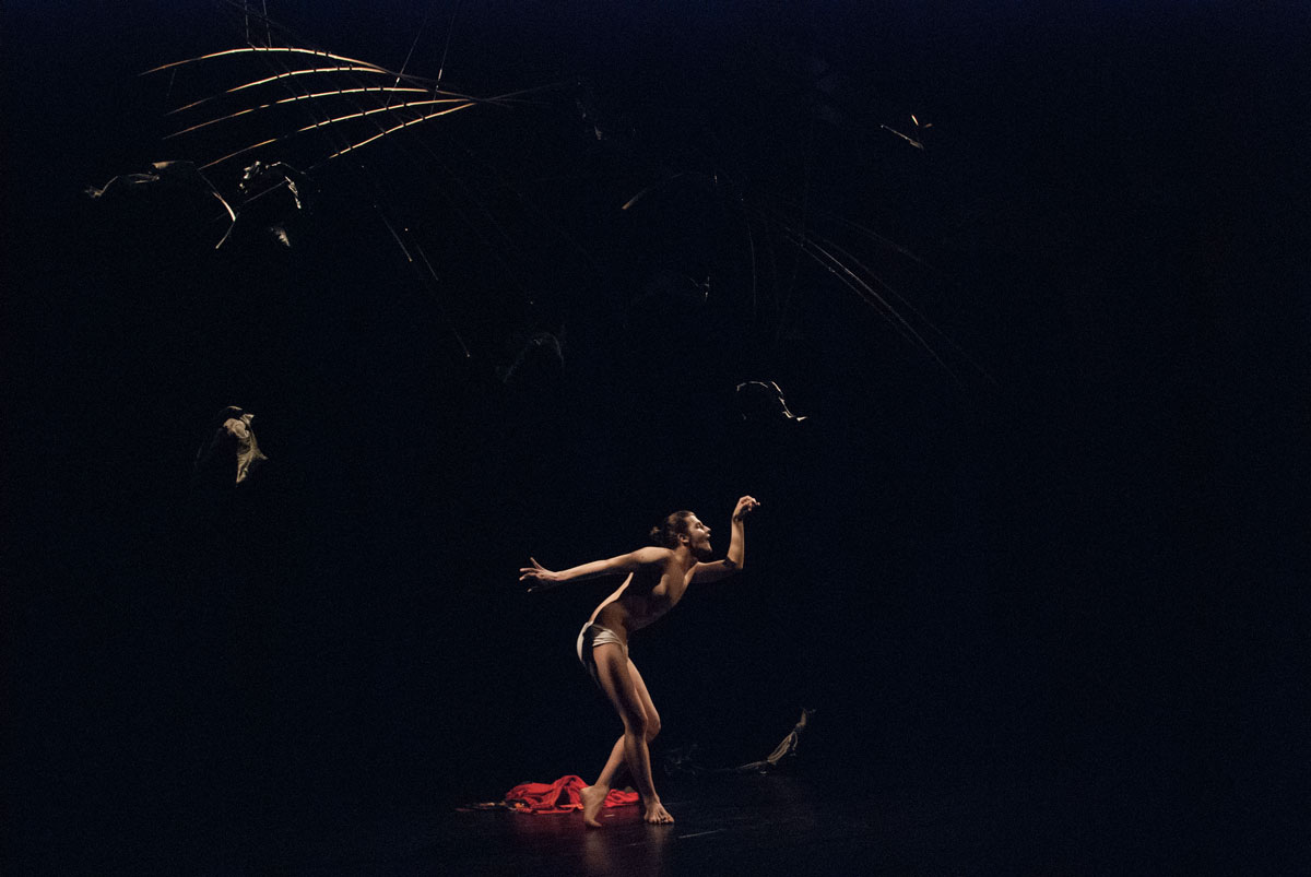 performance butoh with ikebana damiano fina ukigumo