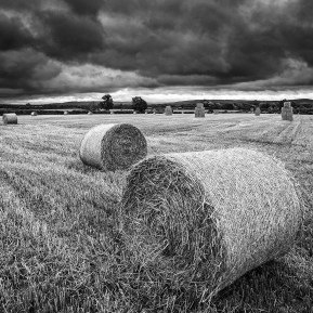 hay bales Landscape Photography
