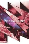Zebra Hunt – 'City Sighs' 8.5/10