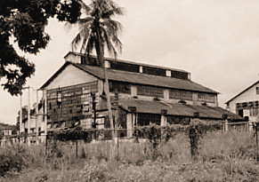 A dilapidated building from Fordlandia