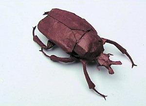 Goliath Beetle, robert j. lang origami