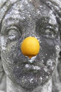 LemonNose