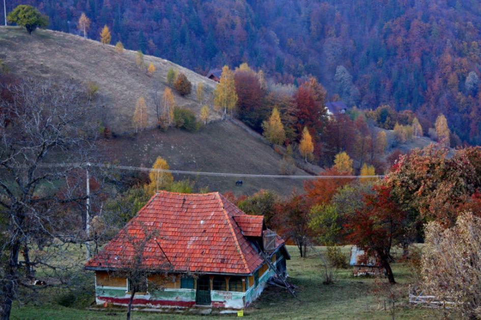 foto: Dana Gonț