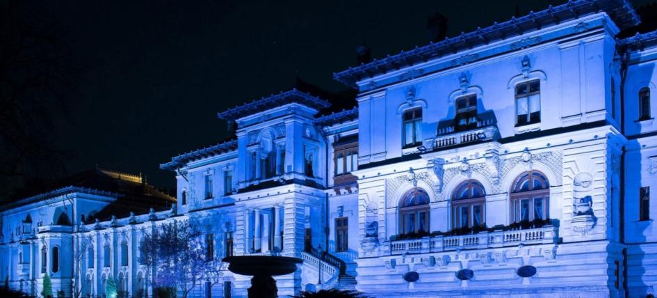 muzeul cotroceni noaptea muzeelor