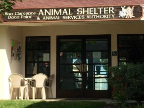 San Clemente-Dana Point Animal Shelter. Photo: Courtesy