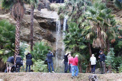 "People stop to take photos at ""Harbor Falls,"" a waterfall created by storm runoff from the Lantern District flowing down to a drainage pipe on Dana Point Harbor Drive and then directing it out to the Harbor. Photo: Andrea Swayne"
