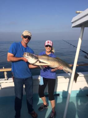 A 38-pound white sea bass was caught on the Helena, a Dana Wharf boat, on June 27. Photo: Courtesy