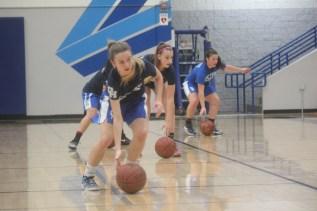 The Dana Hills girls basketball team's 12-3 start to a season is the best since 2004. Photo: Steve Breazeale