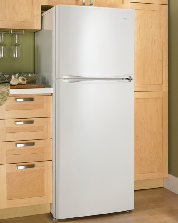 10 Cu Ft Apartment Size Refrigerator