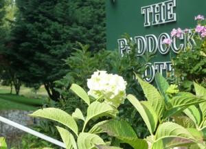 Paddocks-Hotel6