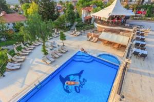 pool-orka-3b