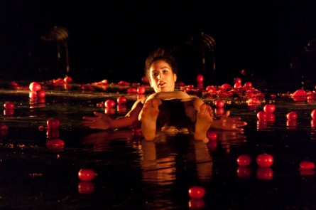"""Idan Cohen's """"Swan Lake"""""""