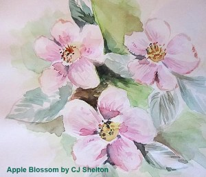 Apple Blossom Watercolour Sketch