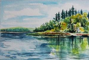 Summer Reflections by CJ Shelton