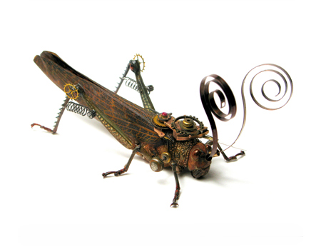 insect2a