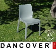 Chair, Rome, Grey, 6 pcs.