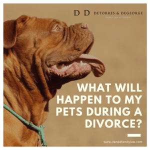 What Will Happen To My Pets During A Divorce?