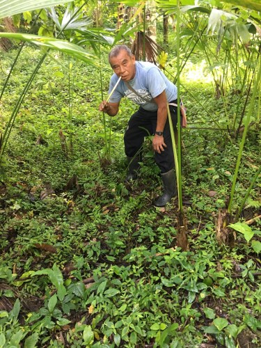 Eladio on his farm in Belize