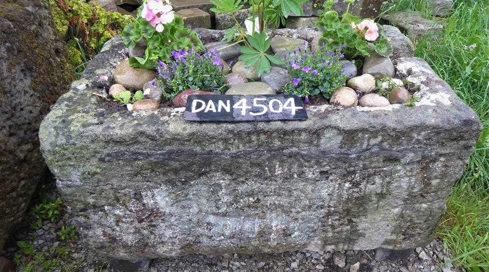 DAN 4504