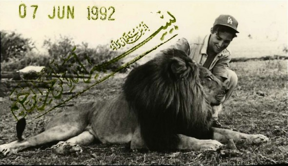 dan and the lion