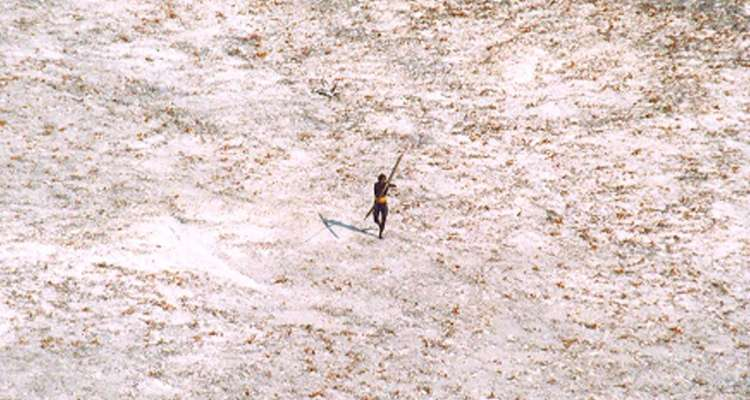 FILE PHOTO: A Sentinel tribal man aims with his bow and arrow at an Indian Coast Guard helicopter as it flies over the island for a survey of the damage caused by the tsunami in India's Andaman and Nicobar archipelago, December 28, 2004. REUTERS/Indian Coast Guard/Handout/File Photo