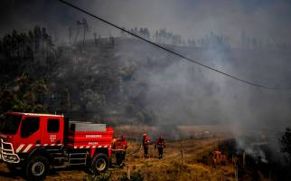 Firefighters are at work to extinguish a wildfire at Roda village in Macao, central Portugal on July 21, 2019. Planes and helicopters joined nearly 2,000 firefighters in central Portugal on July 21, 2019 to battle huge wildfires in a mountainous region where more than 100 people died in huge blazes in 2017. Around 20 people have been injured in the blaze, including eight firefighters and 12 civilians, according to the interior ministry.  / AFP / PATRICIA DE MELO MOREIRA