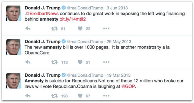 Donald Trump amnesty .47 PM