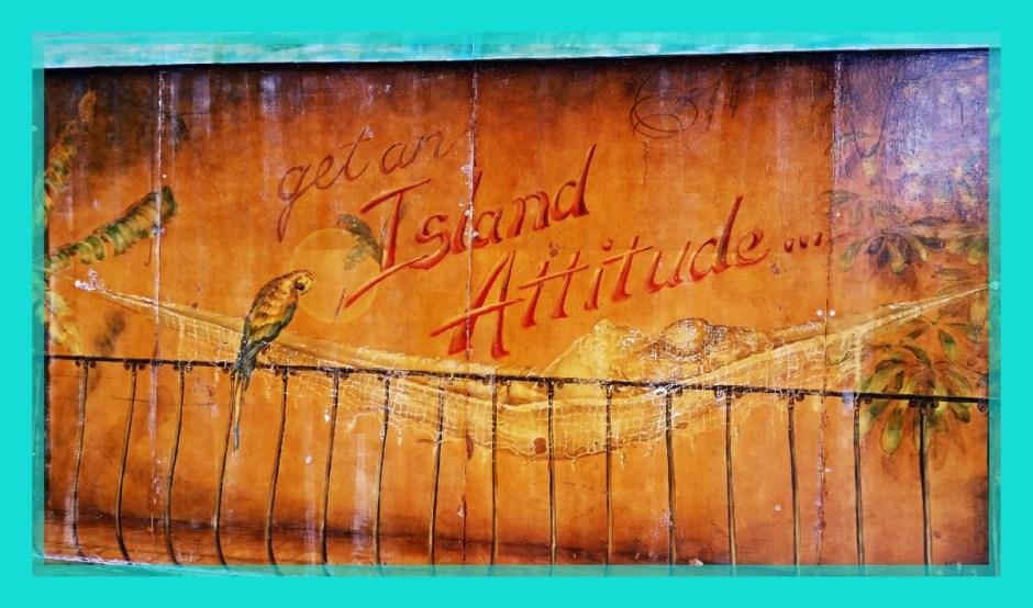 Island Attitude - DT Monthly Recap