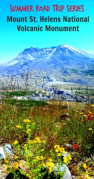 Mount St. Helens Pin
