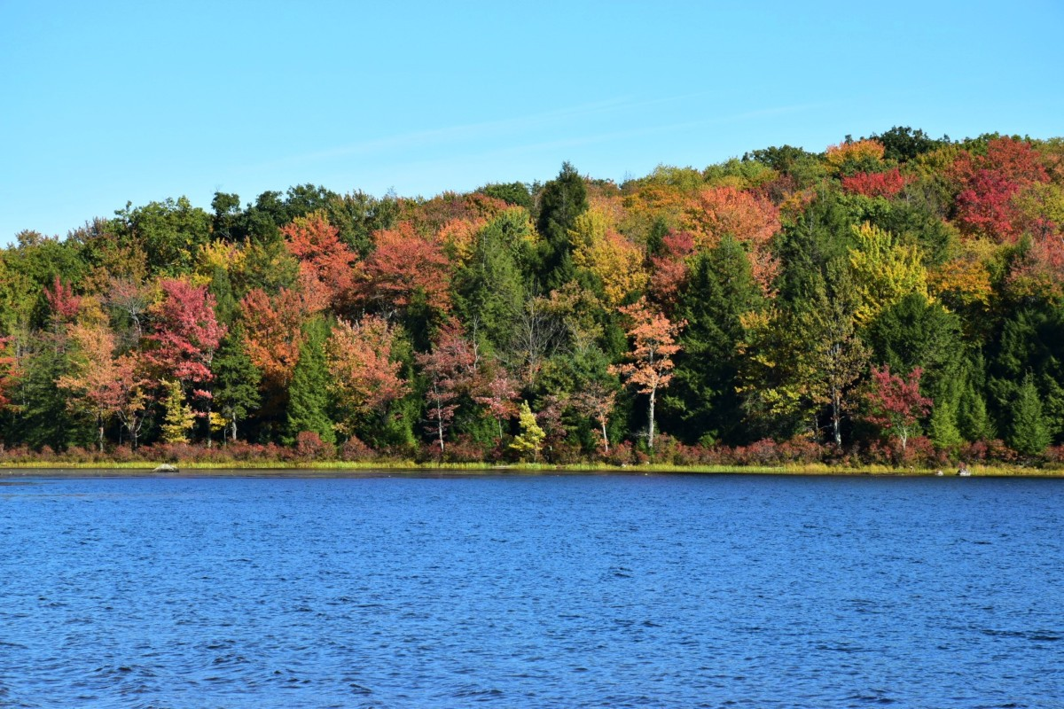 How to Find Fall Foliage in the Poconos