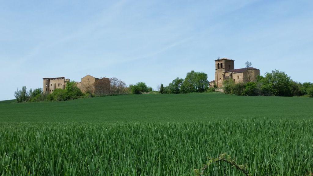 Camino Frances Pamplona Cirauqui