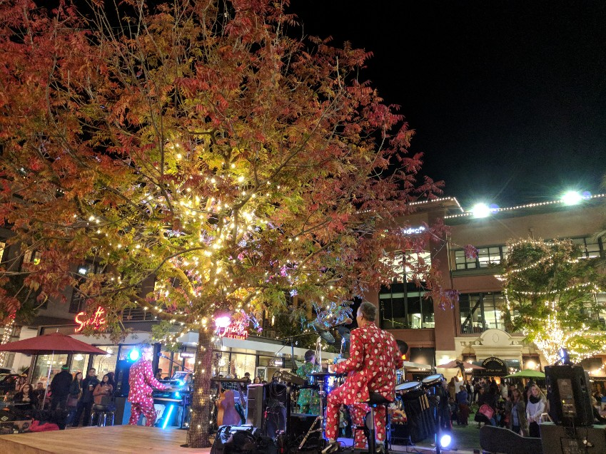 Row Christmas Lighting Tree Santana