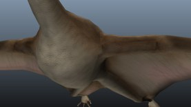 Pterodactyl - Rendered by Mental-Ray
