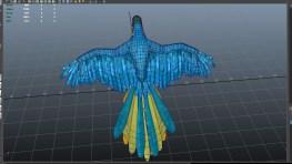 parrot_02