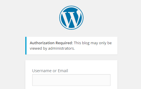 WordPress Login Screen displayed when accessing staging site when not logged in as admin