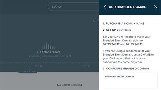 Bitly short domain settings